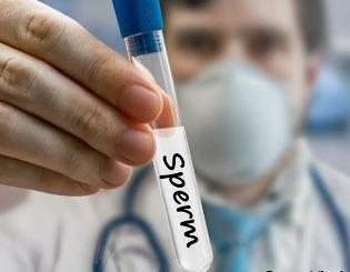 Донор спермы - шанс для бесплодной пары: требования к донору и процедура сдачи материала