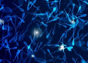 Олигоастенотератозооспермия: что это и как лечить?