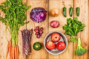 почему нельзя игнорировать питание в протоколе ЭКО